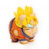 HC-Goku amarillo