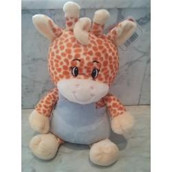 Baby jirafa boy